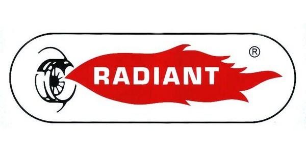 Caldeiras Radiant - Assistência Caldeira radiant - Reparação Caldeiras 24 horas - Manutenção Caldeiras a gás e gasóleo radiant - técnico de Caldeiras