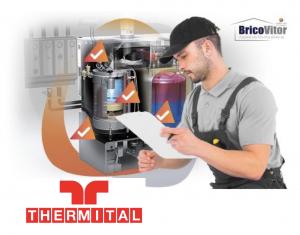 Assistência Técnica Caldeira Thermital Alvarenga